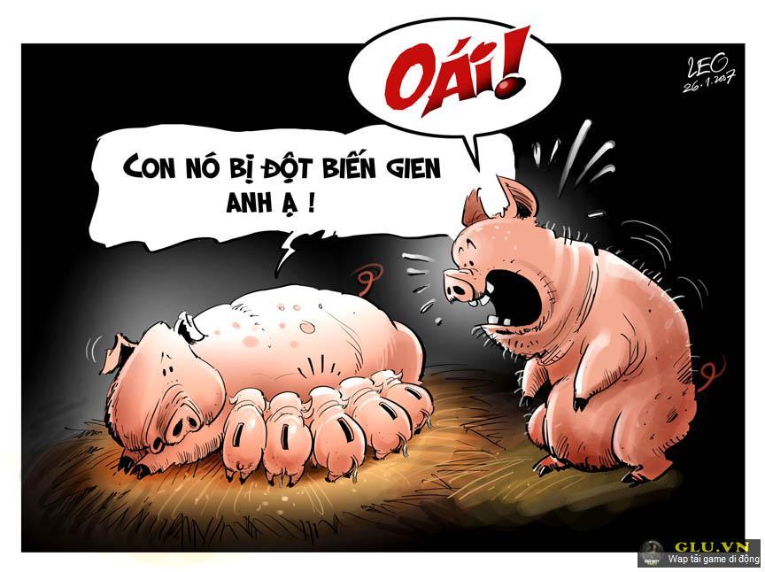 """Hình nền hài hước """"lợn đột biến gen"""""""