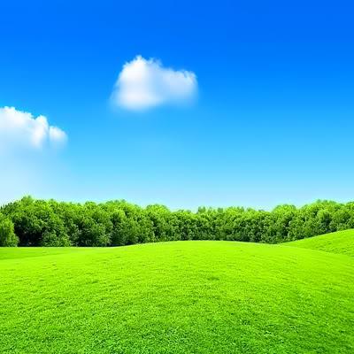 Hình nền cảnh thiên nhiên trong xanh tuyệt đẹp