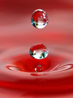 Hình nền giọt nước long lanh tuyệt đẹp