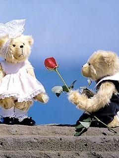Hình nền tình yêu tặng hoa cho gấu cực lãng mạn