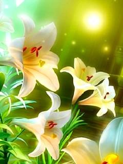 Hình nền 3D - Hoa loa kèn đẹp đến từng milimet