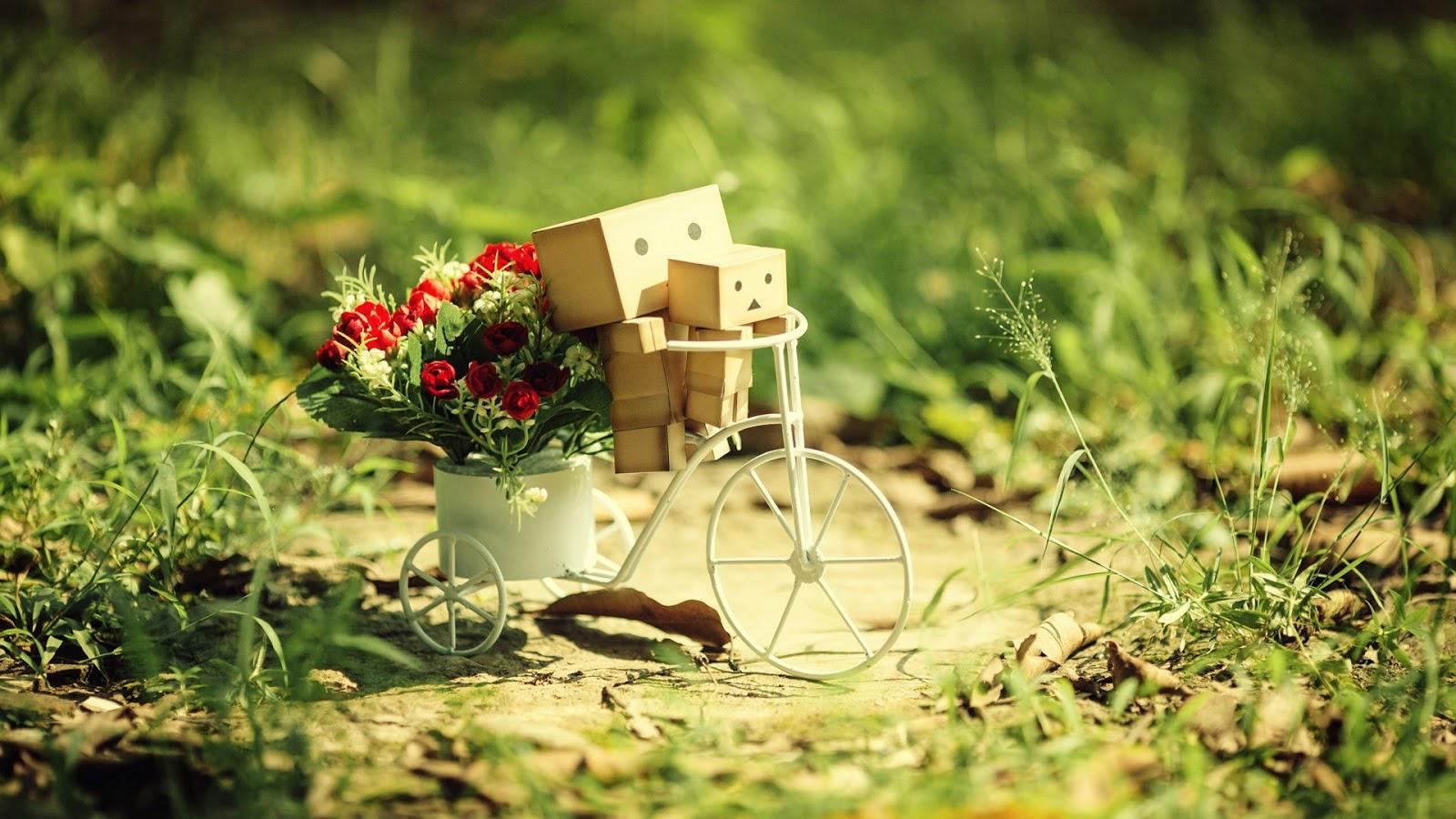 Hình nền tình yêu - Anh chở em trên chiếc xe đạp xinh