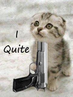 Hình nền hài hước - Chú mèo tự sát