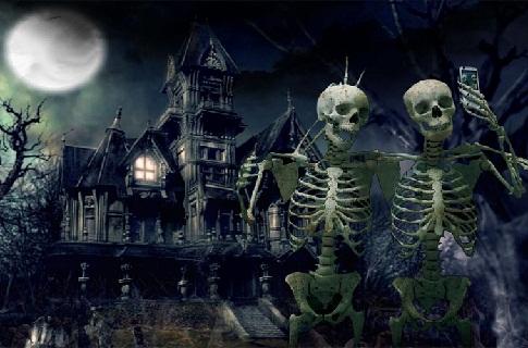 Hình nền halloween - Những bộ xương người hài hước