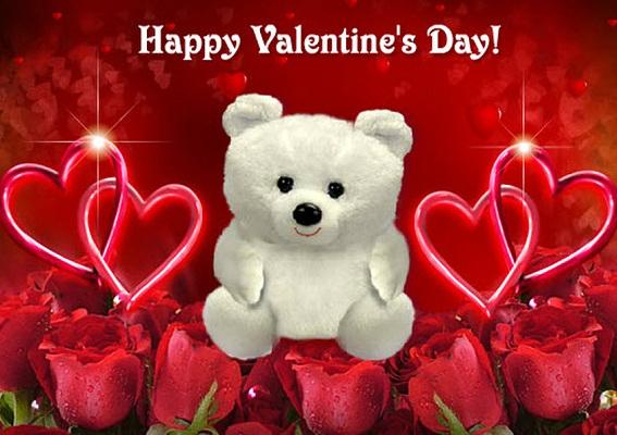 Hình nền valentine – Gấu bông cực đáng yêu