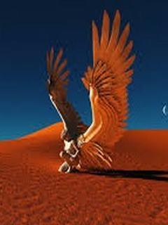 Hình nền 3D - Đại bàng trên sa mạc