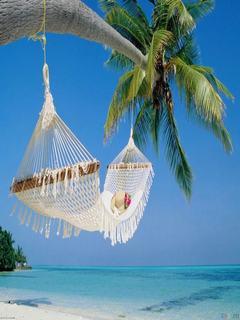 Hình nền mùa hè – Chiếc võng trên bãi biển