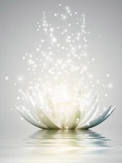 Hình nền 3D - Ngỡ ngàng hoa sen phát sáng