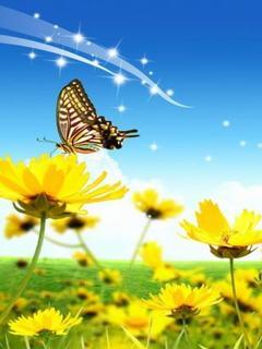 Hình nền mùa hè - Cánh đồng hoa vàng đẹp hút mắt
