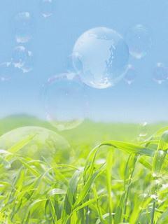 Hình nền mùa hè - Đồng cỏ xanh tươi mát nhất