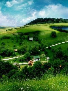 Hình nền mùa hè – Miền quê xanh