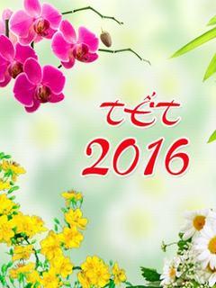 Hình nền tết 2016 rực rỡ sắc xuân