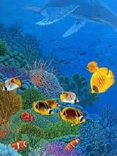 Hình nền sống động - Đại dương muôn màu