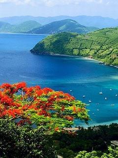 Hình nền 3d biển xanh cực đẹp