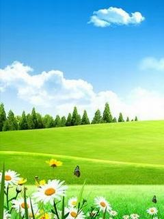Tải hình nền 3d đẹp - Đồng cỏ xanh