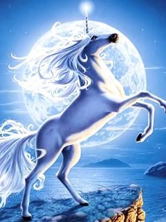 Hình ảnh ngựa 3D đang phi mã cực đẹp