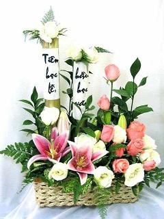 Hình nền hoa 20/11 – Muôn hoa rực rỡ chúc mừng ngày nhà giáo Việt Nam
