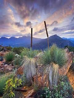 Những bức tranh thiên nhiên đẹp nhất thế giới