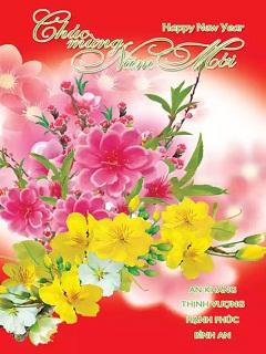 Hình Tết 2017 hoa mai hoa đào rực rỡ chào đón năm mới