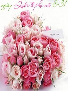 Tải hình ảnh hoa đẹp 8-3 mừng ngày Quốc tế phụ nữ