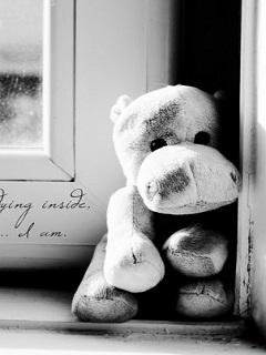 Xem những hình buồn cô đơn đến xé lòng