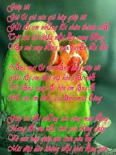 Xem những câu thơ hay nói về tình yêu lãng mạn nhất
