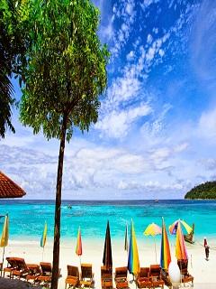 Hình ảnh bãi biển trong xanh với bãi cát trắng trải dài
