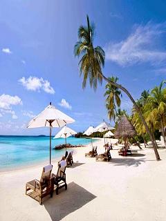 Hình ảnh tận hưởng mùa hè với biển xanh cát trắng