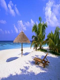 Hình nền mùa hè biển xanh cát vàng lãng mạn