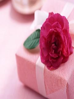 Hình nền 8/3 món quà dễ thương cho người phụ nữ yêu thương